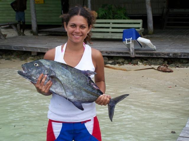 latest-catch20