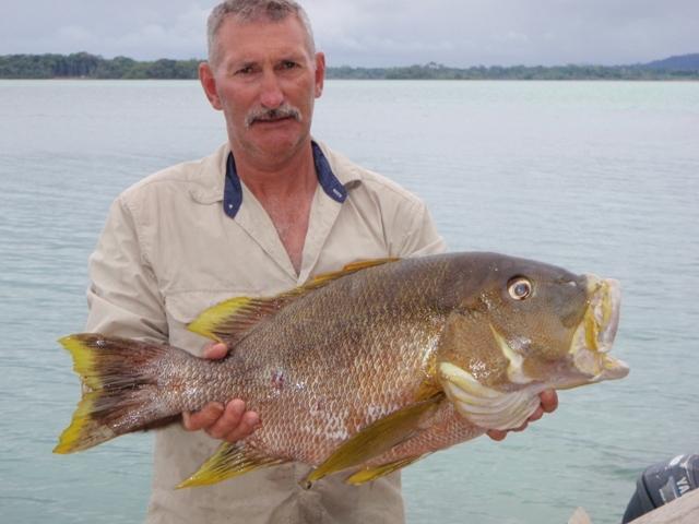 latest-catch26